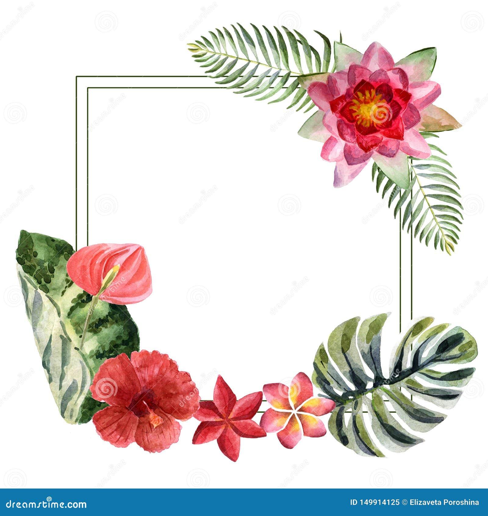 Ljus sommarillustration för vattenfärg med tropiska blommor