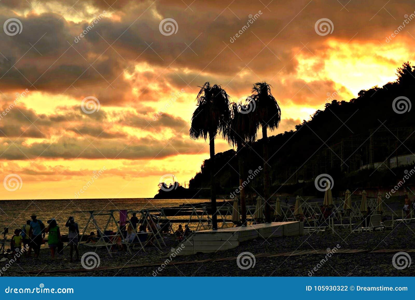 Ljus sommarsolnedgång på havet
