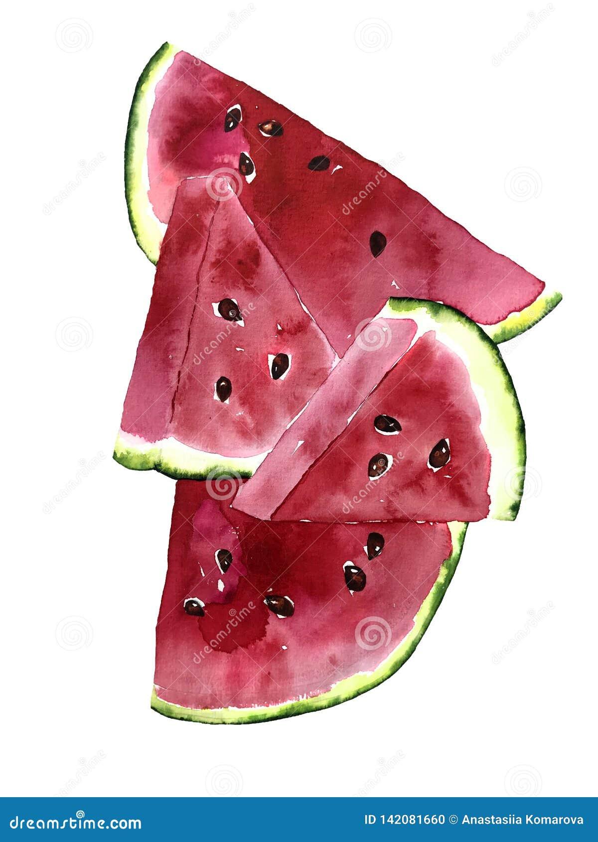 Ljus vattenfärgvykort för sommar med stycken av vattenmelon