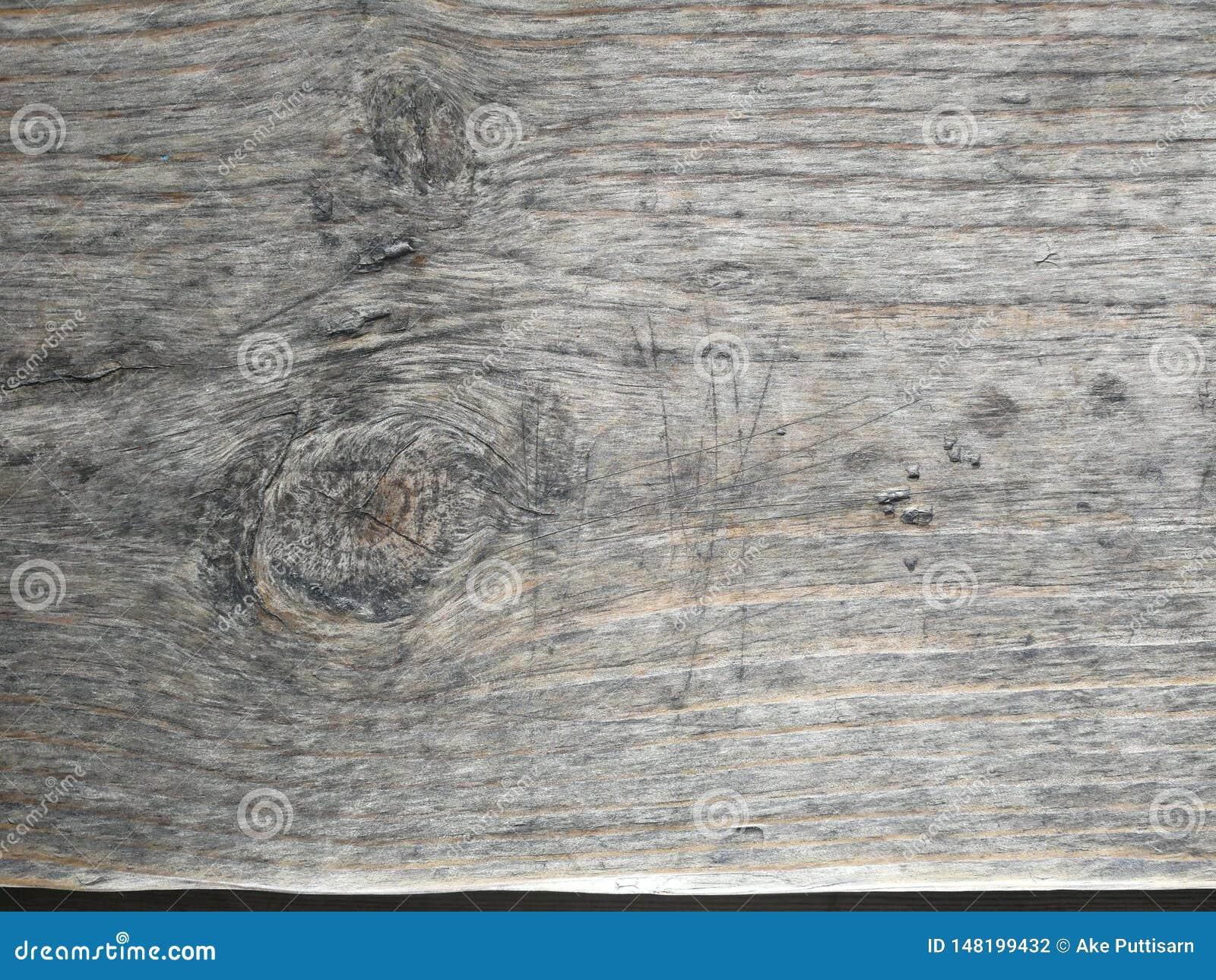 Ljust - brun tr?yttersida, djupt tr?korn, torrt gammalt tr?, horisontalband