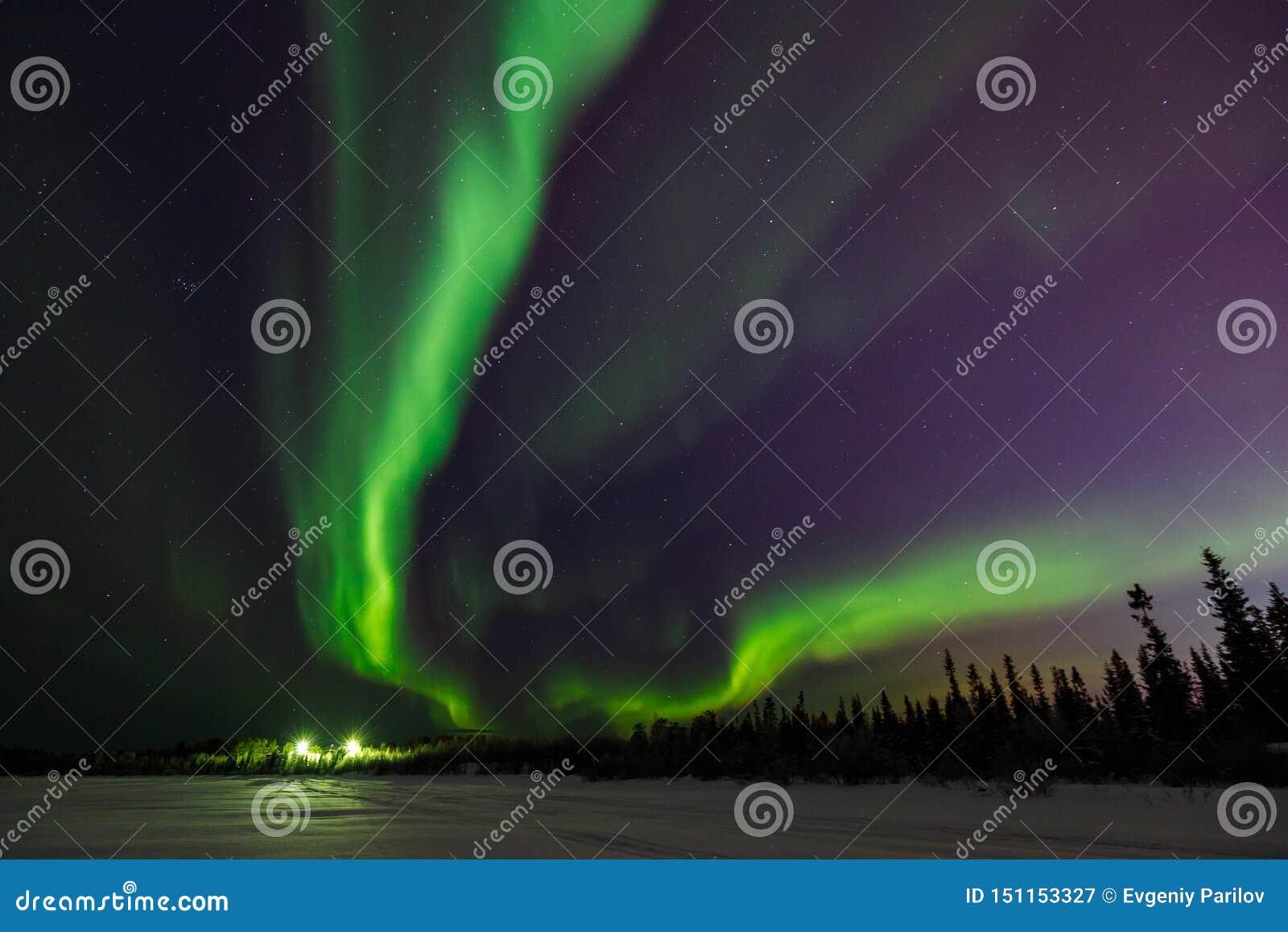 Ljust - gröna exponeringar av nordliga ljus går in i perspektiv utöver svart horisont