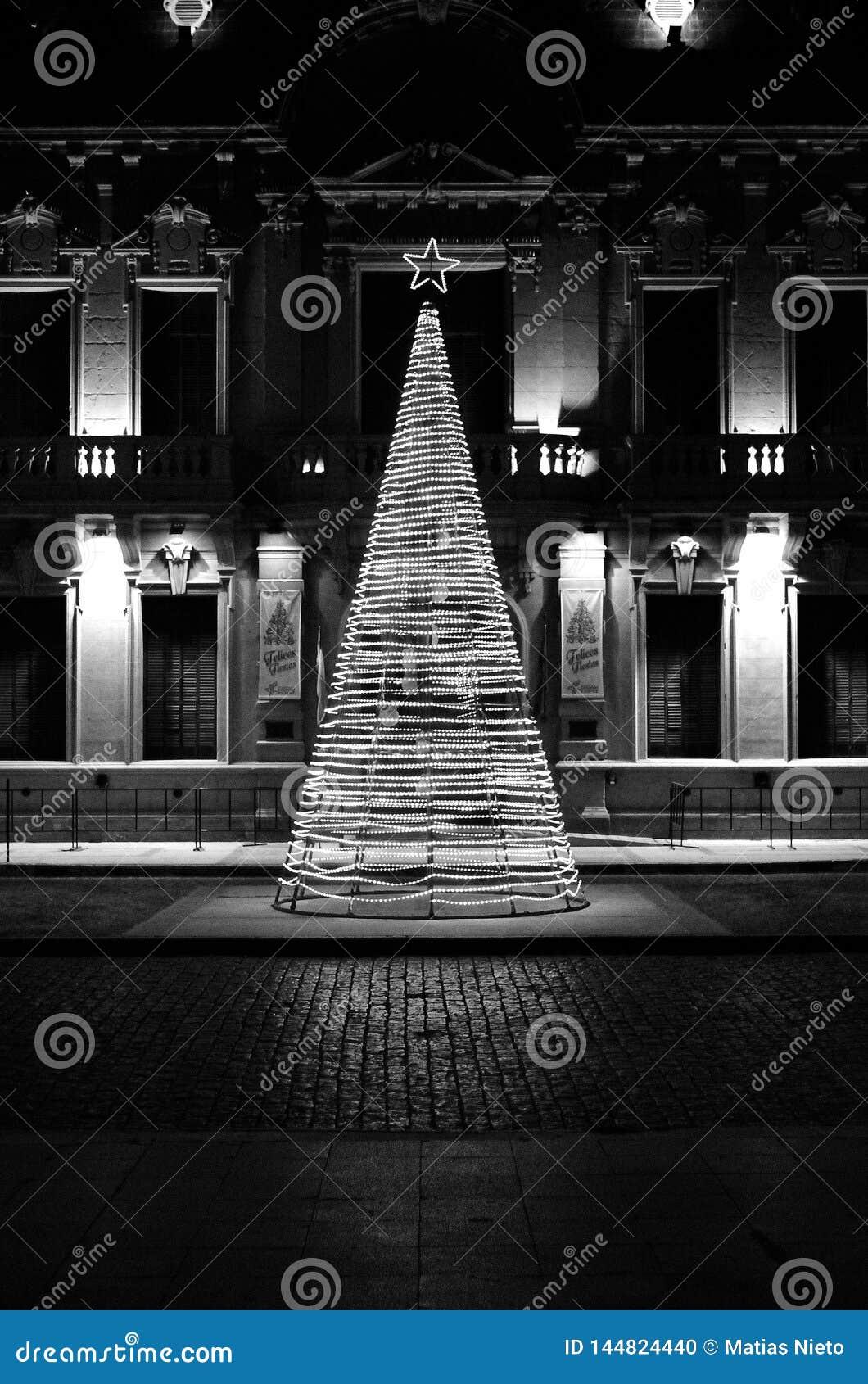 Ljust trädbegrepp för jul i klassisk historisk region av Sydamerika i svartvitt