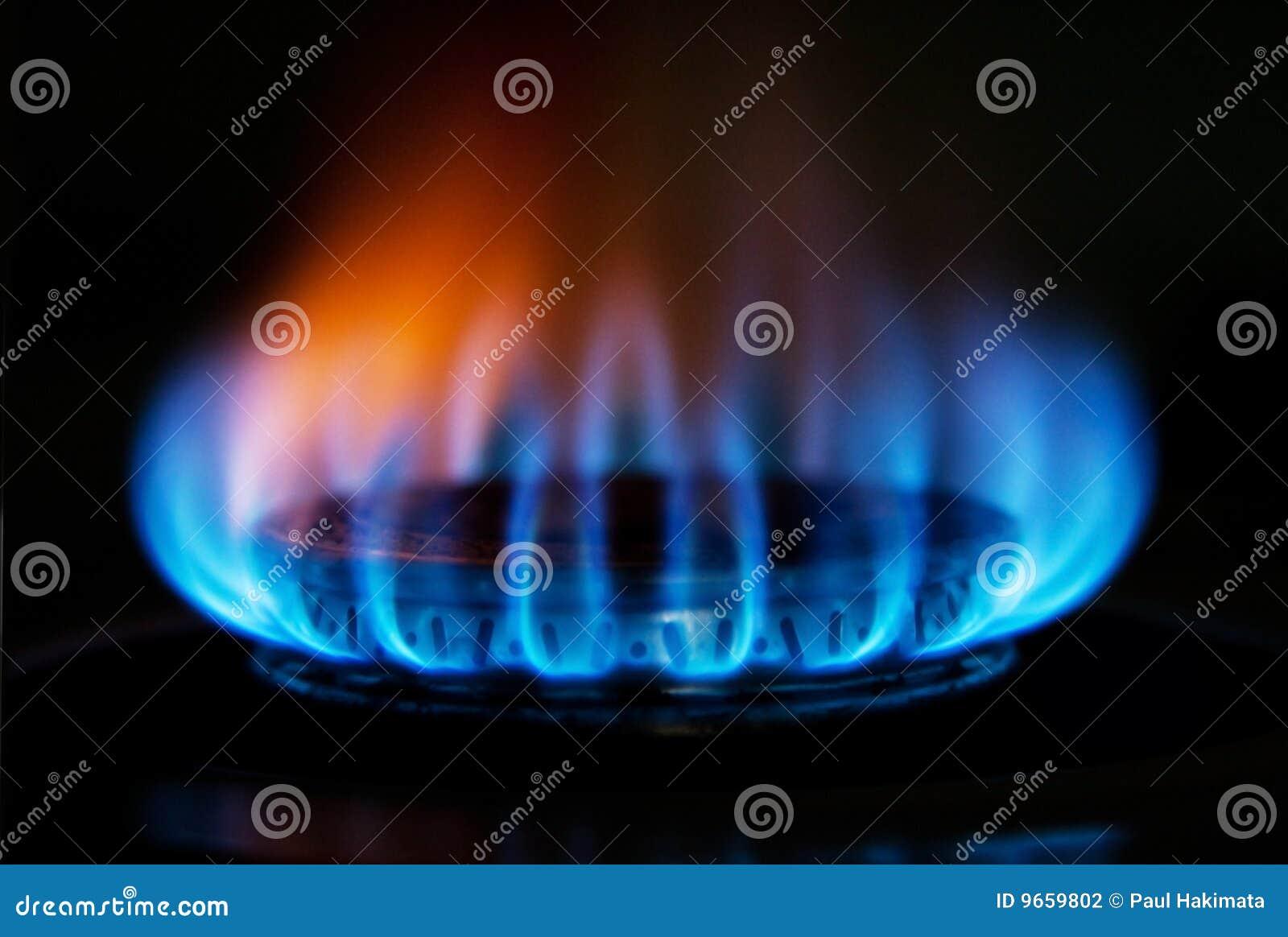 Llama del fuego de gas de la estufa