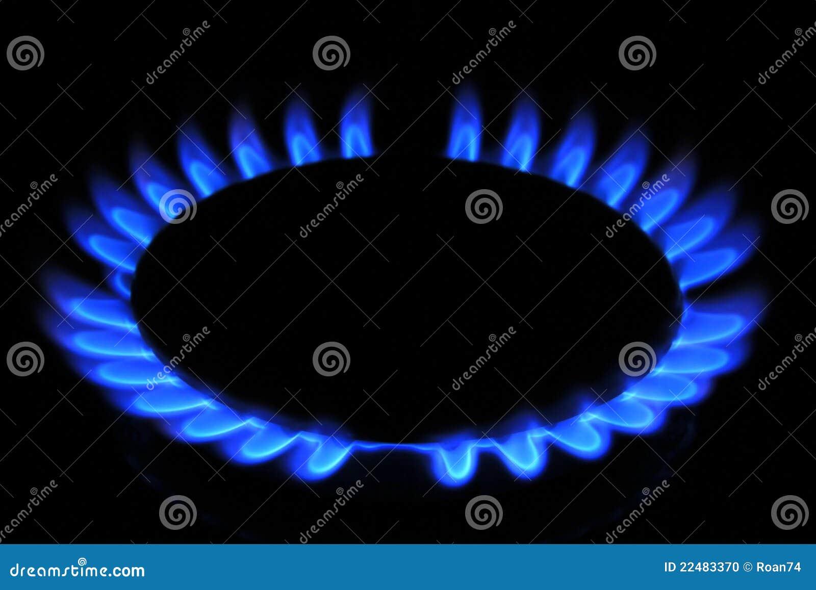 Llama del gas natural de la estufa foto de archivo - Estufas de gas natural ...
