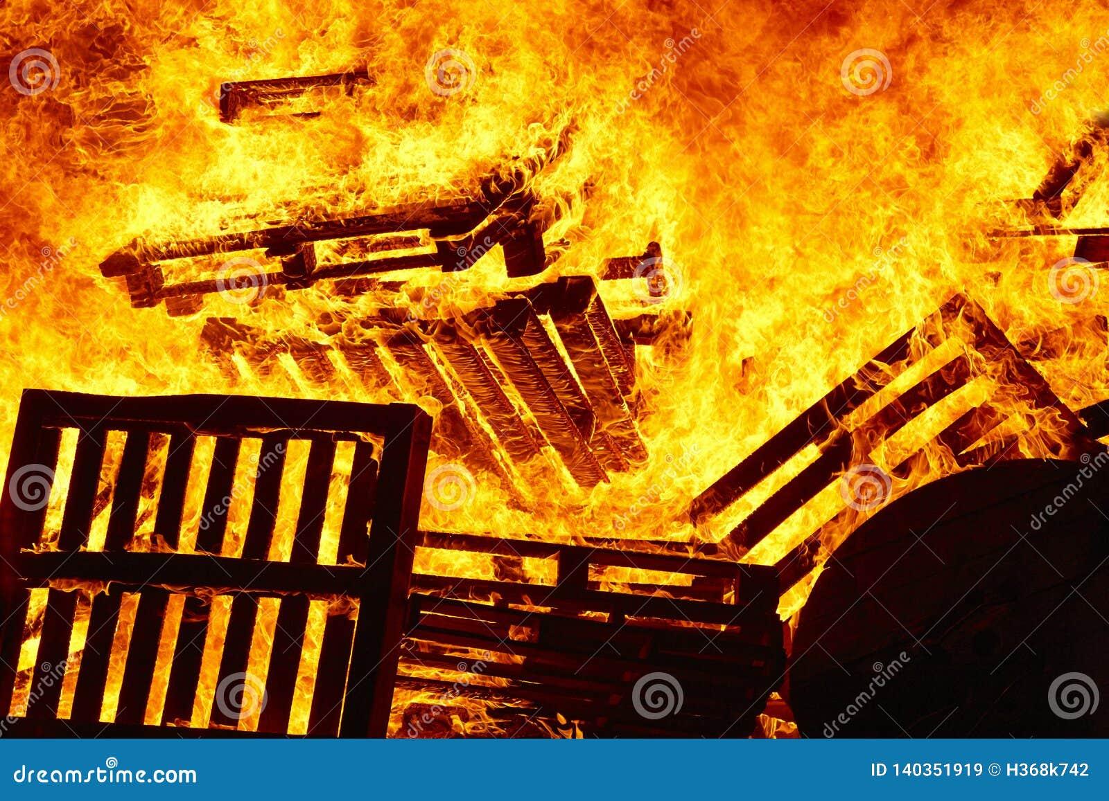 Llamas del fuego en una hoguera Emergencia del bombero Combustión del peligro