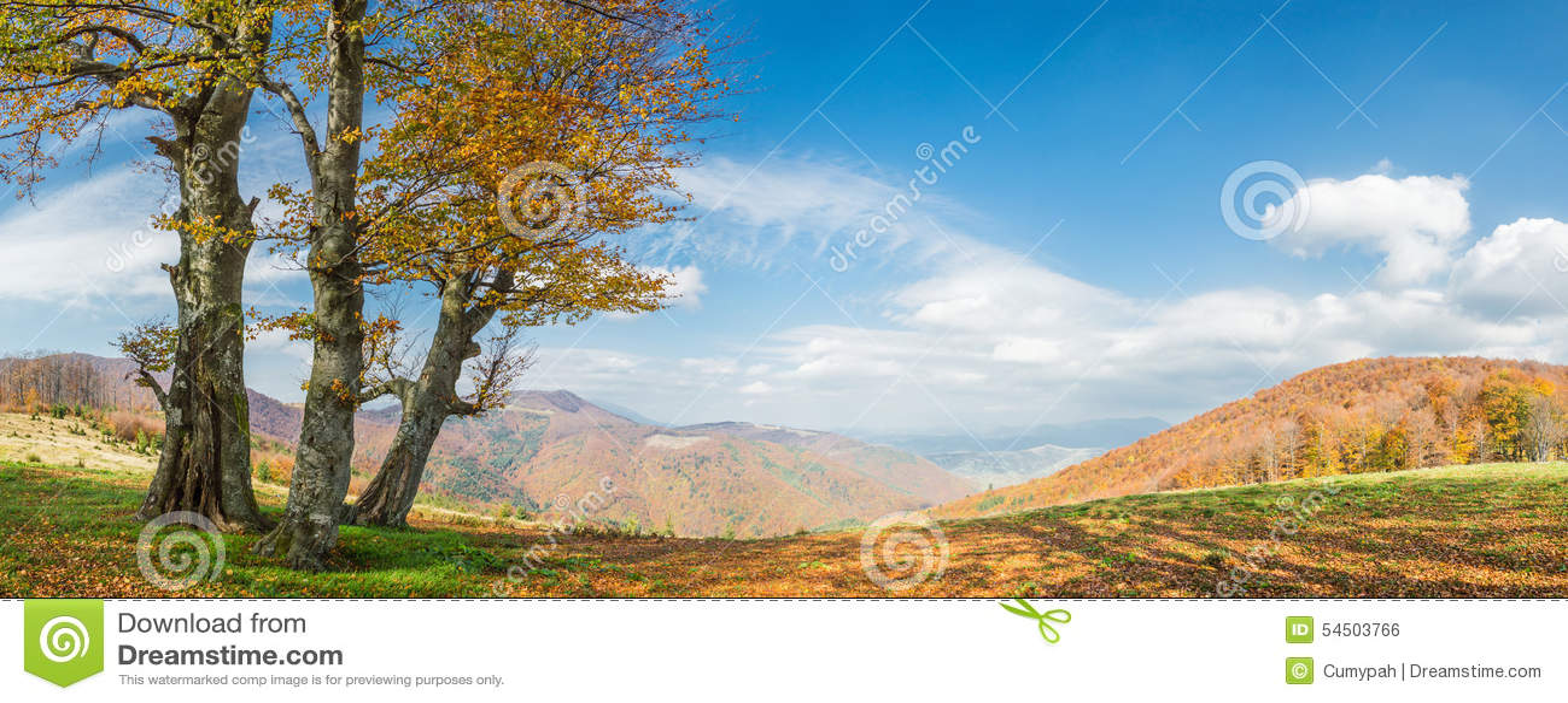 Llandscape avec l arbre d or
