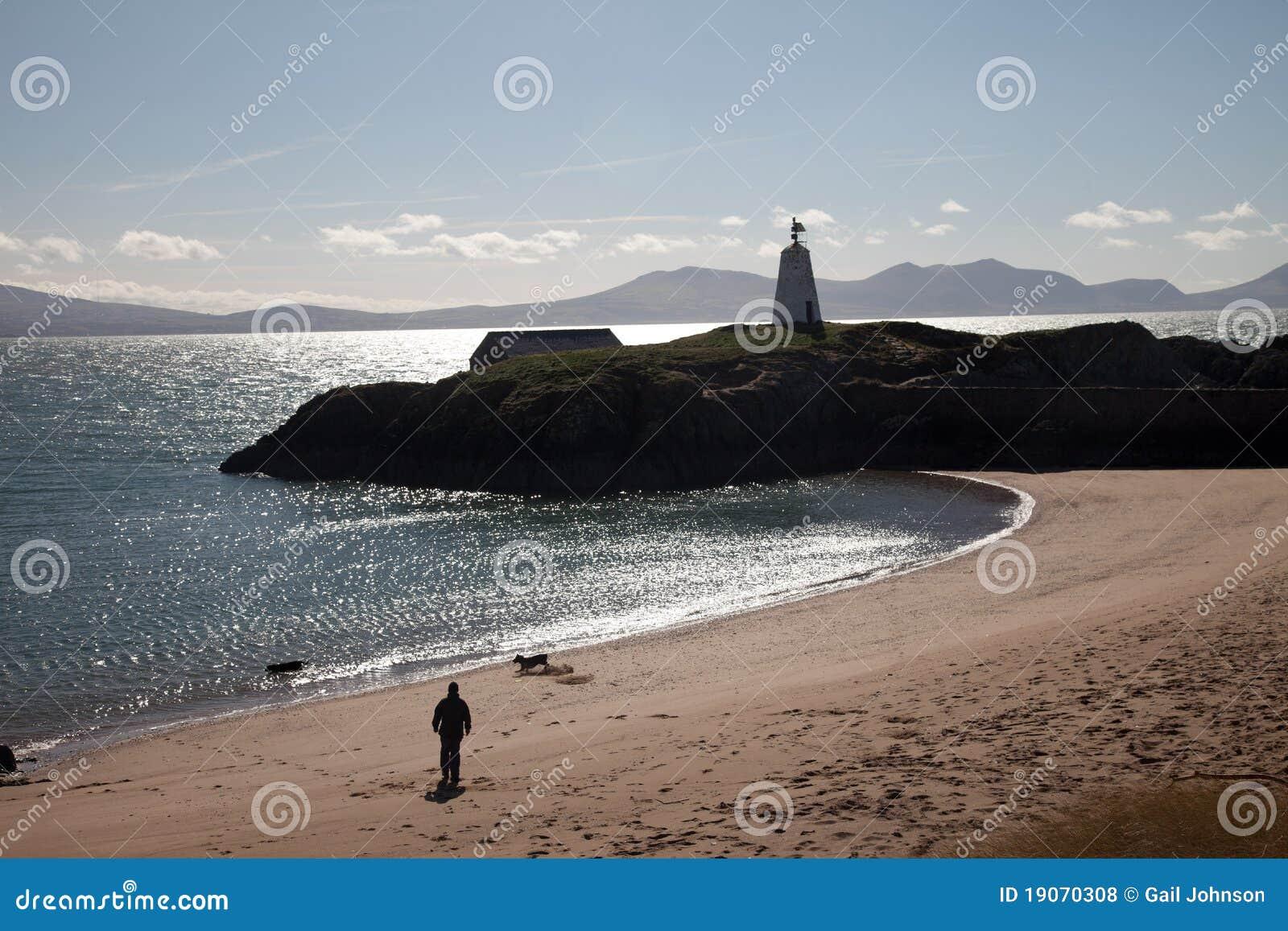 Llandwyn Insel