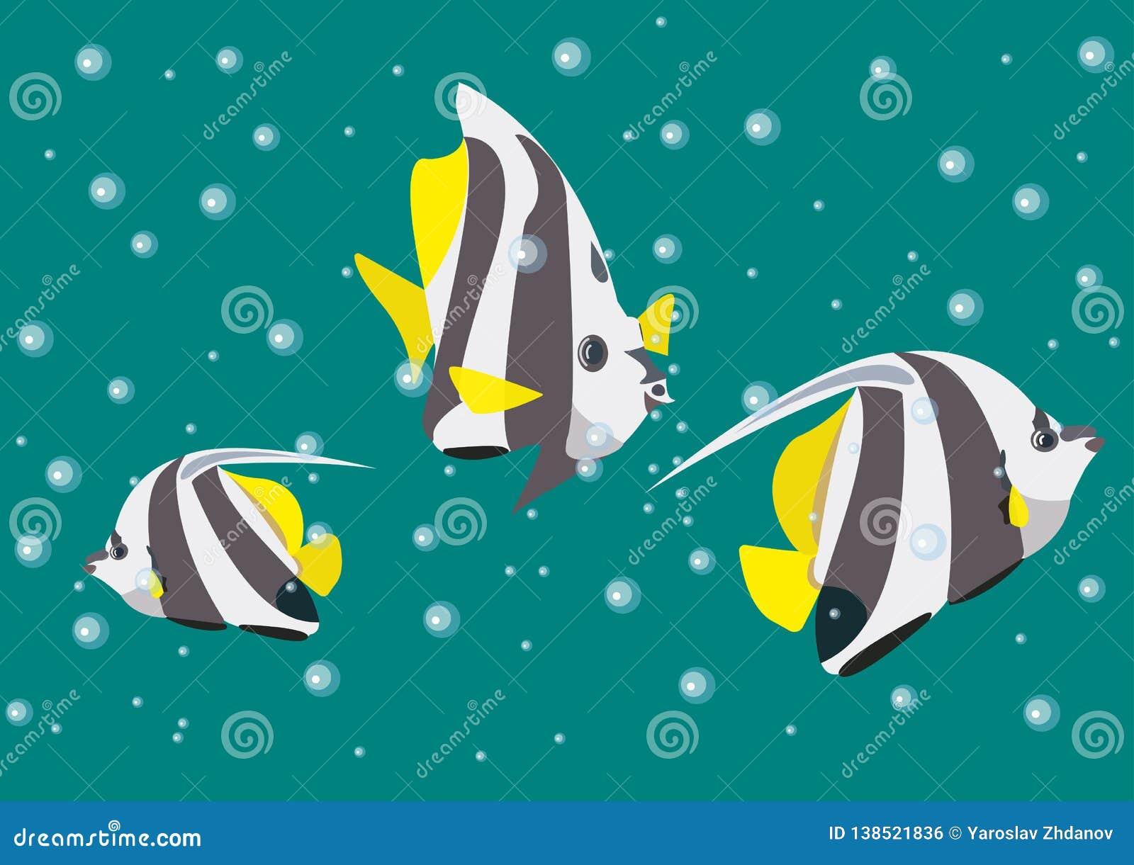 Llustration med ängelfiskar på bakgrunden av de havsdjupen och bubblorna