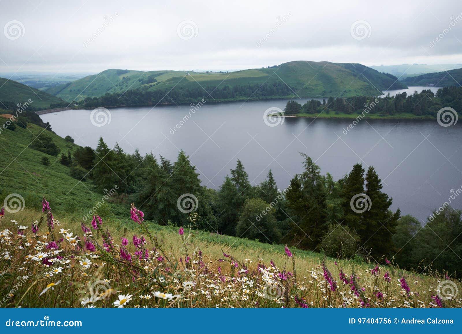 Llyn Clywedog Reservoir cerca de Llanidloes Powys País de Gales