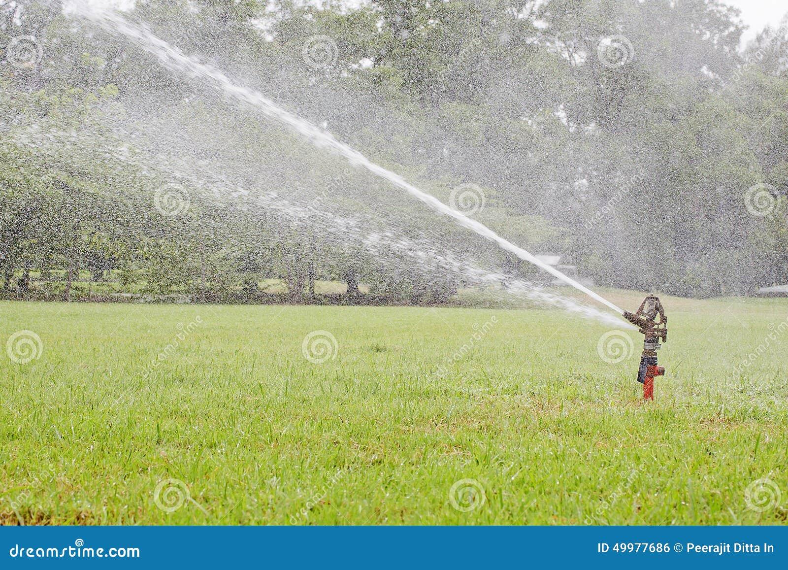 Lo spruzzatore d 39 innaffiatura dell 39 attrezzatura di for Irrigazione piante