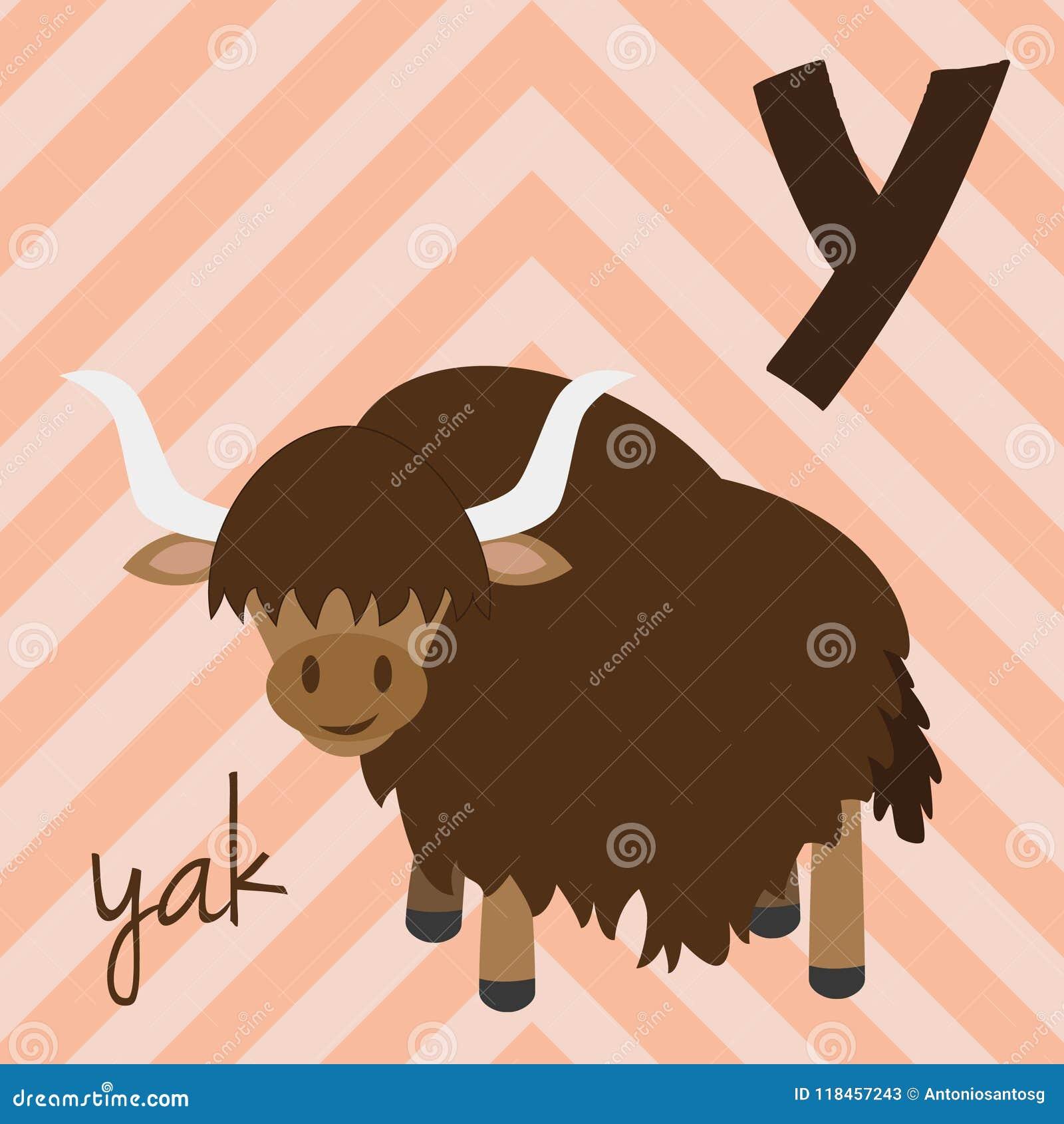 Lo zoo sveglio del fumetto ha illustrato l alfabeto con gli animali divertenti Alfabeto spagnolo: Y per i yak