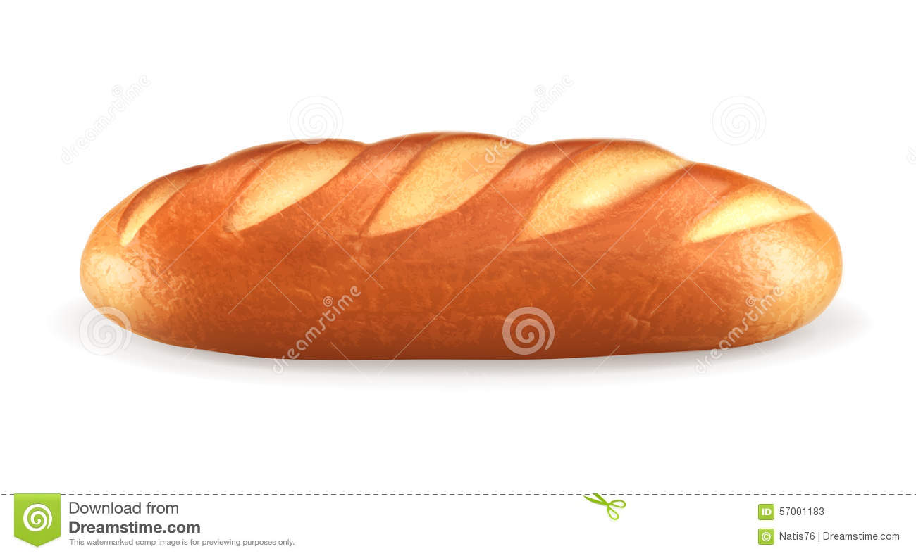 Bread Vector Hand Drawn Illustration Other Types Of Wheat Flour Cartoon