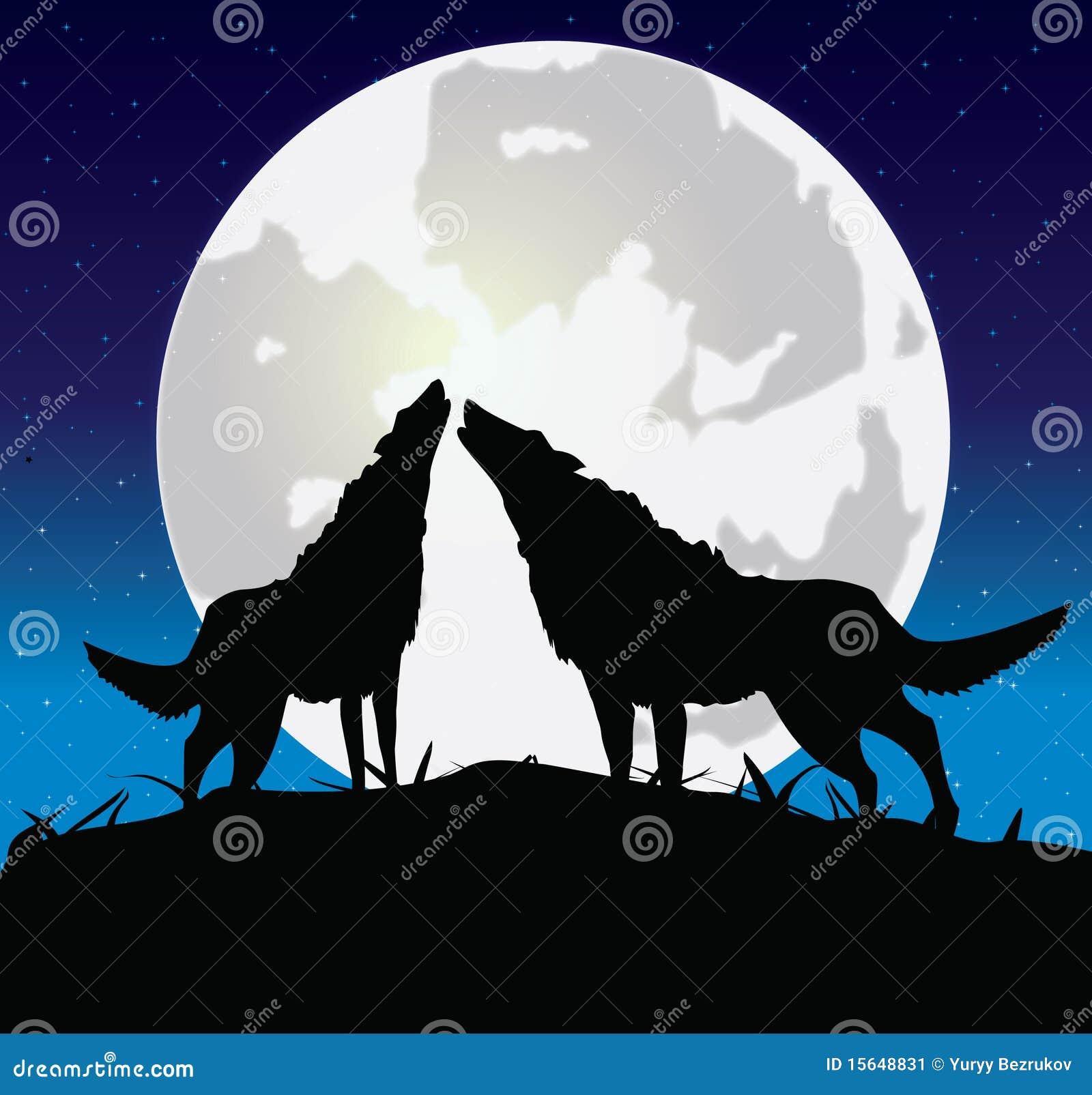 Lobo com um she-wolf