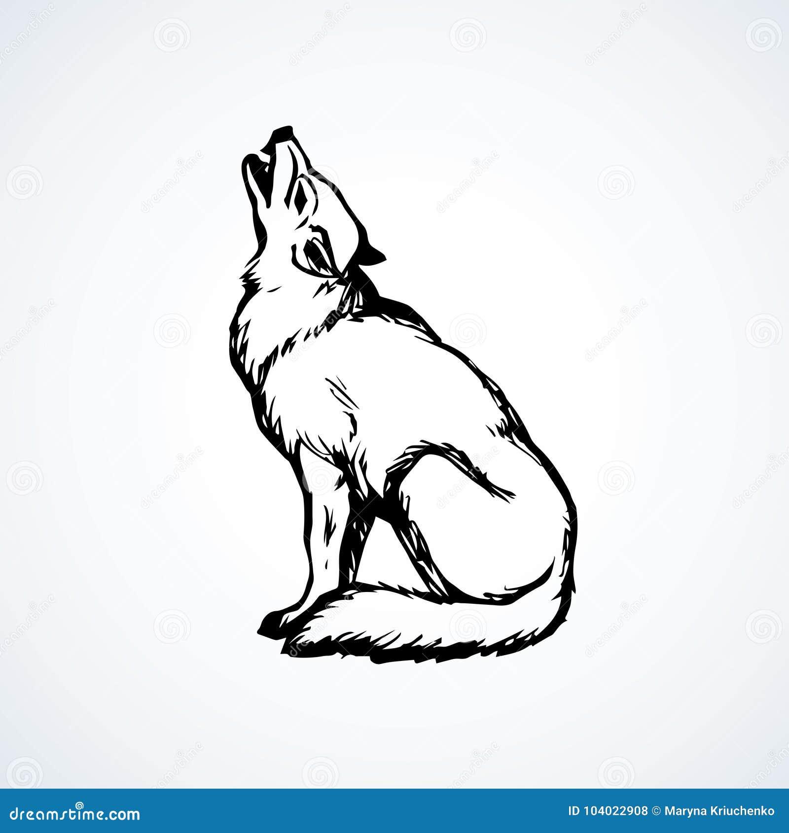Lobo Desenho Do Vetor Ilustracao Do Vetor Ilustracao De Gravado