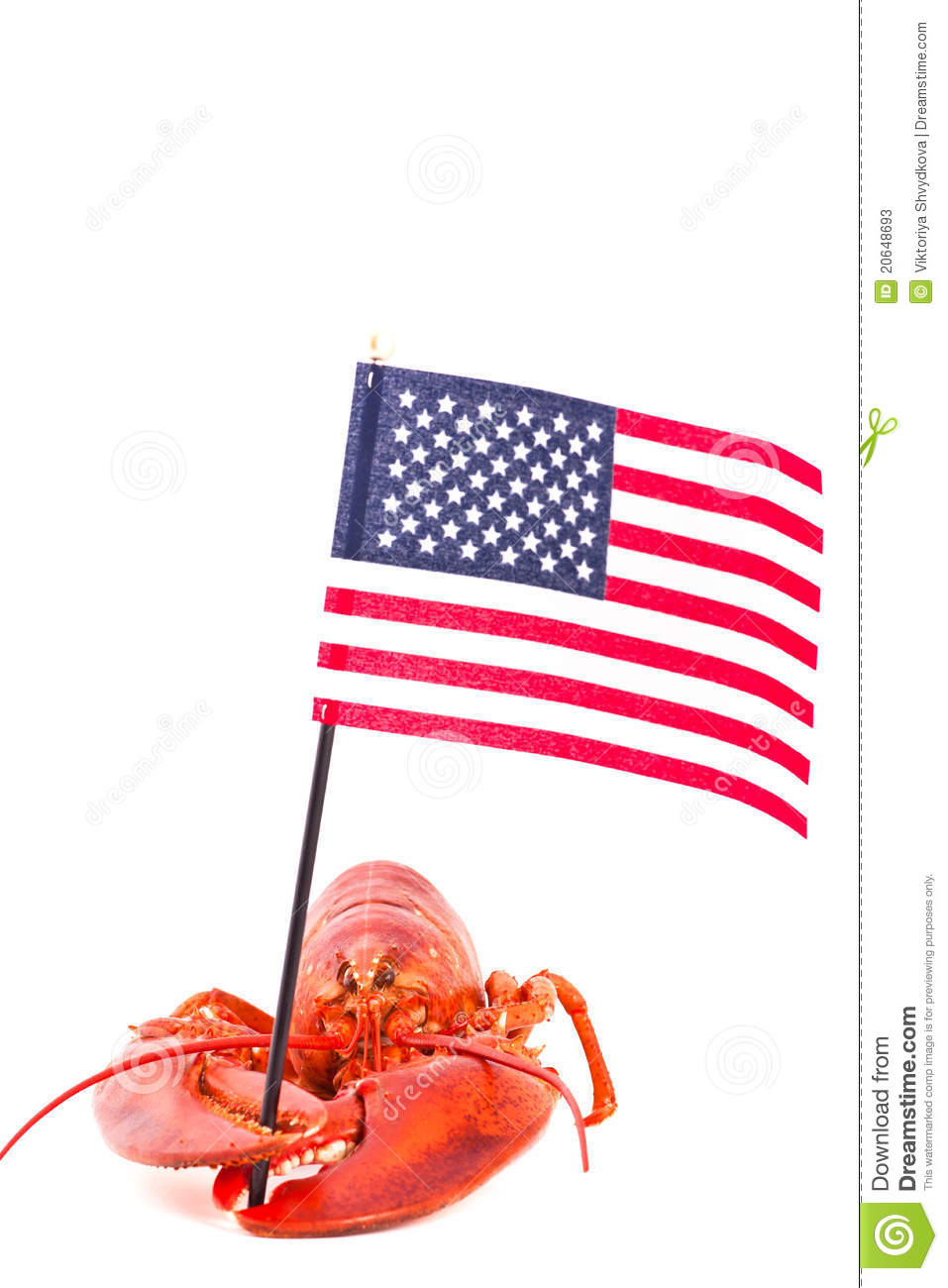 Lobster With American Flag Stock Photos - Image: 20648693