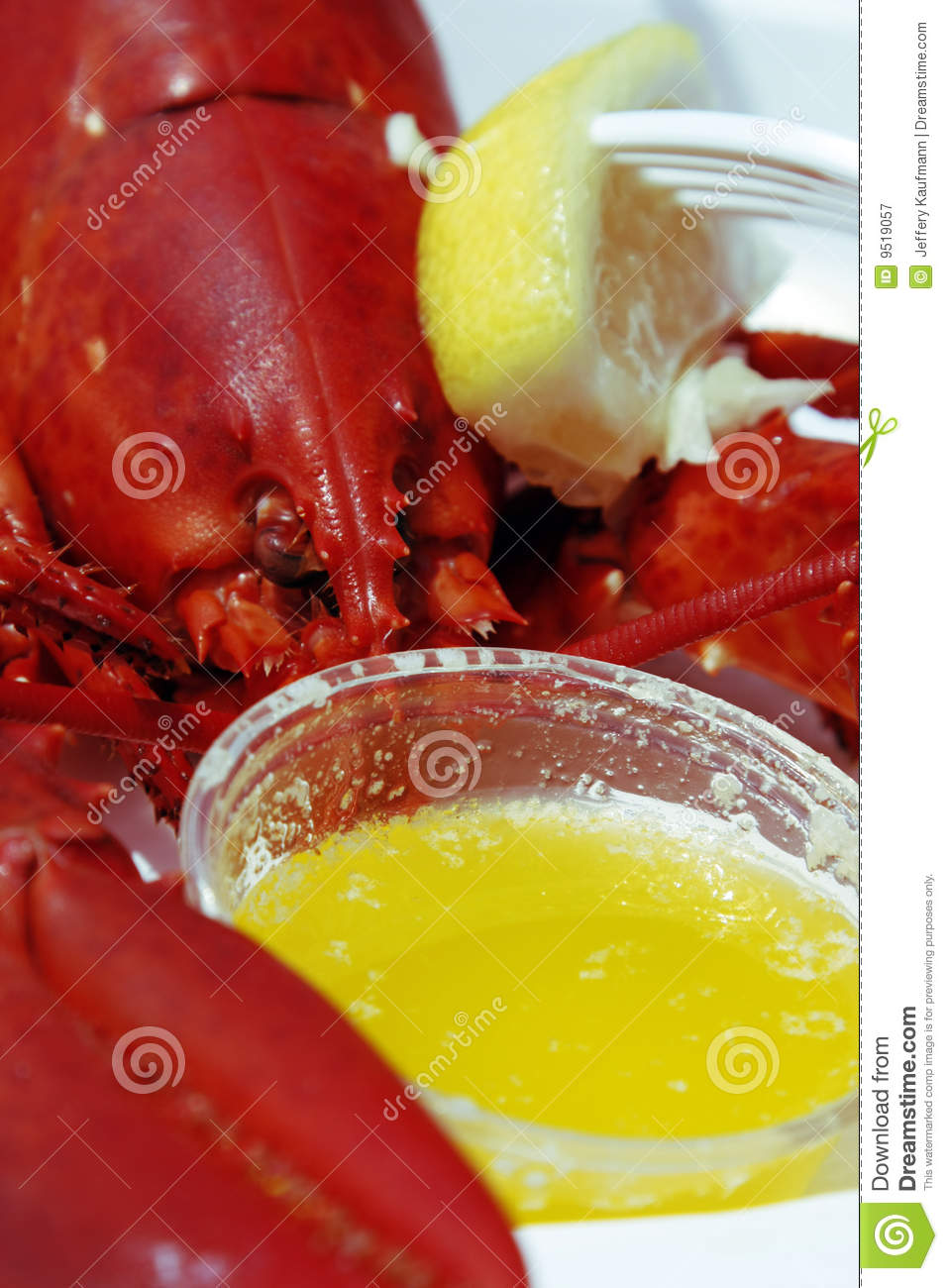 Lobster lunch on a plate with drawn butter and lemon.