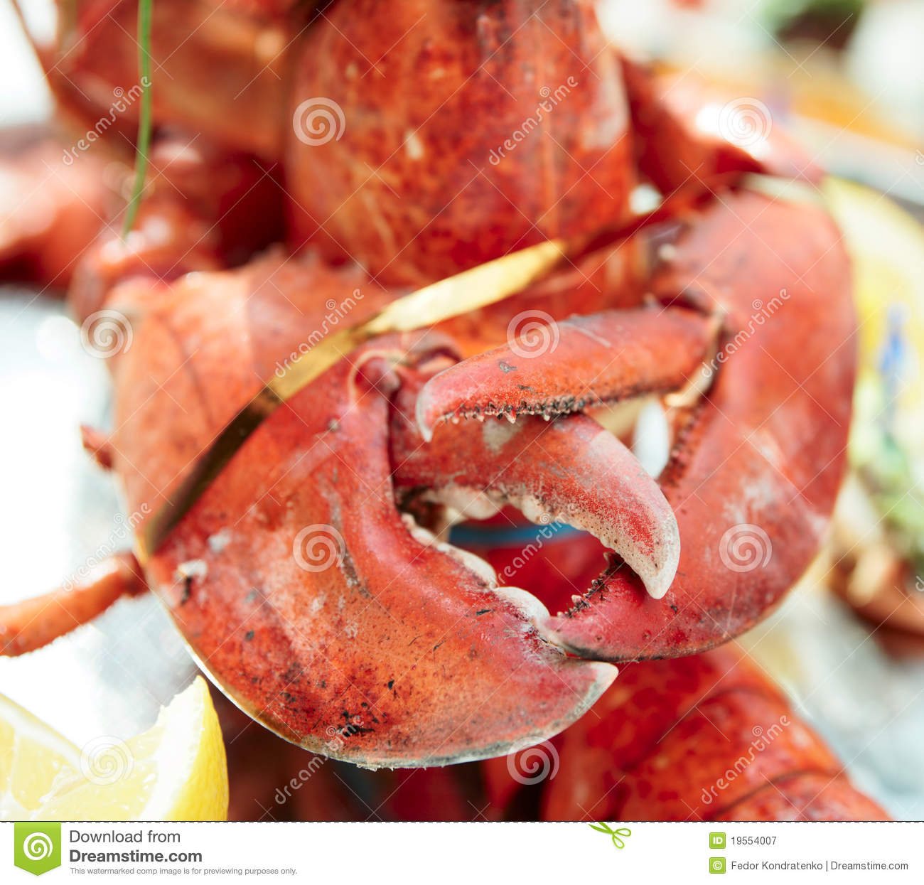 how to cook lobster claws