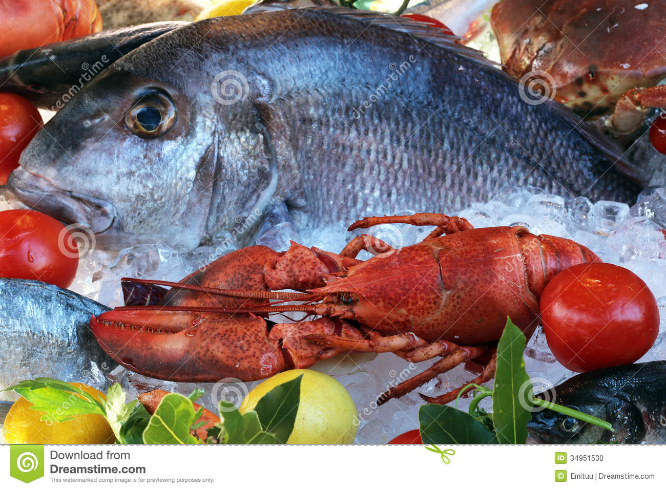 Lobster and Fish stock photo. Image of craps, lobster - 34951530
