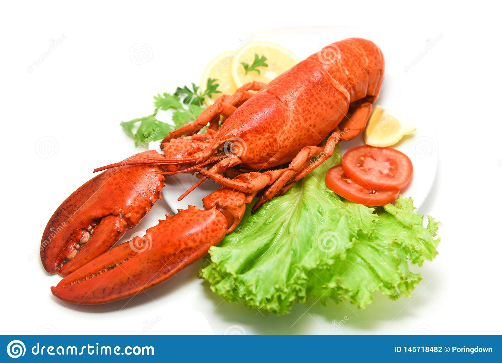 Lobster isolated seafood delicious white plate with lemon coriander and salad lettuce / Close up of steamed lobster food