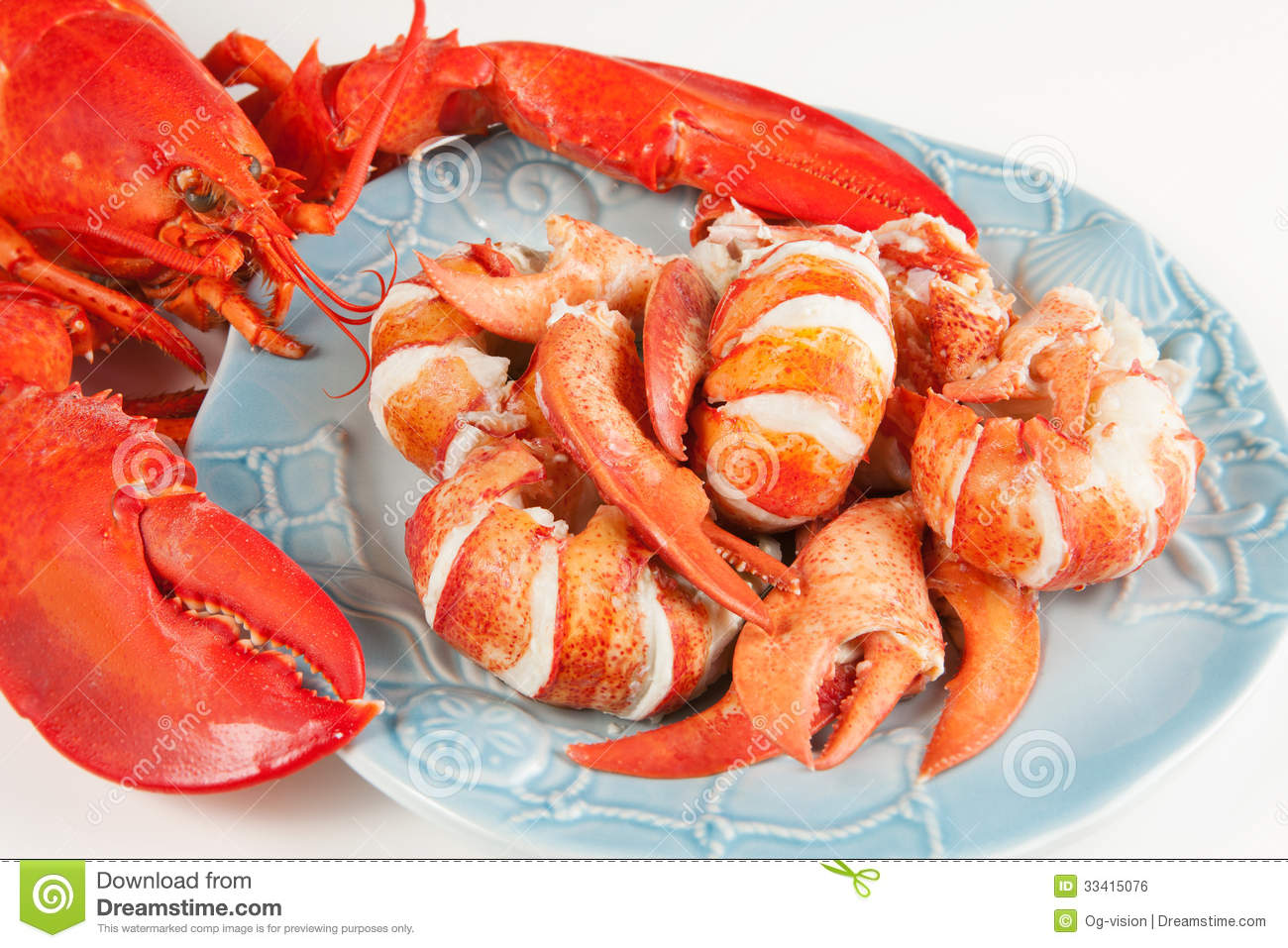 Lobster meat stock photo. Image of cooked, plate, white - 33415076