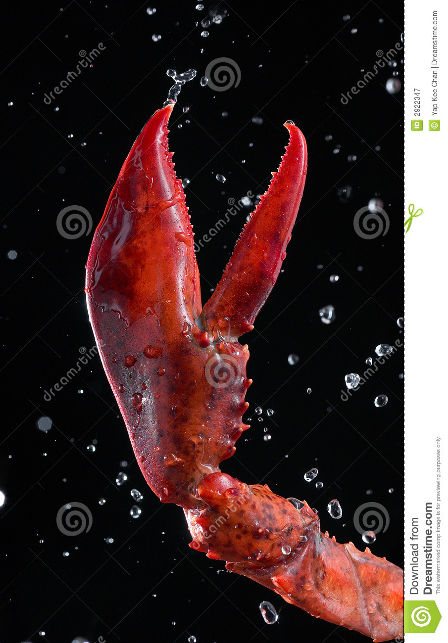 Lobster pincer