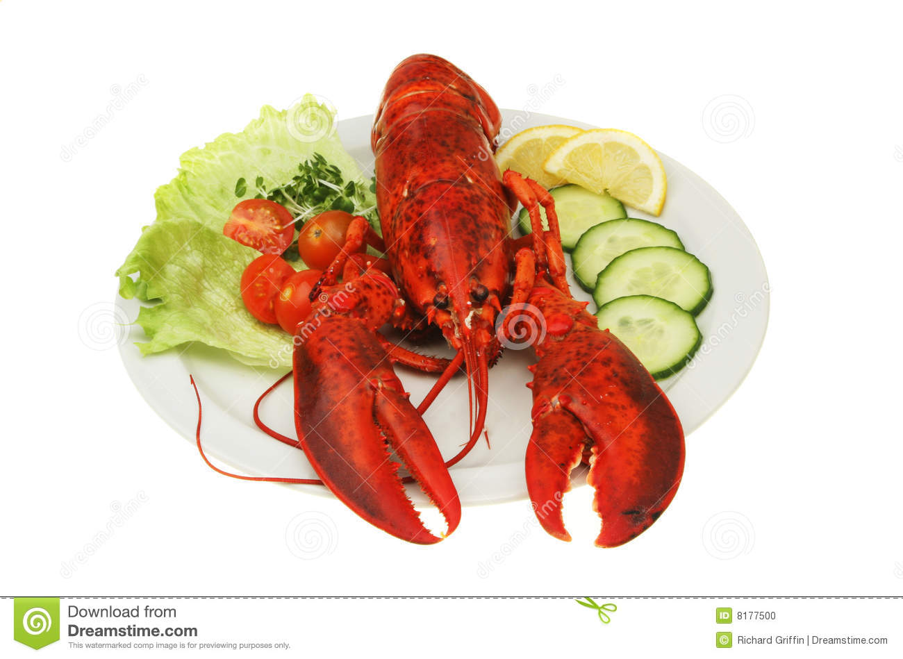 Lobster On Plate Stock Photo - Image: 8177500