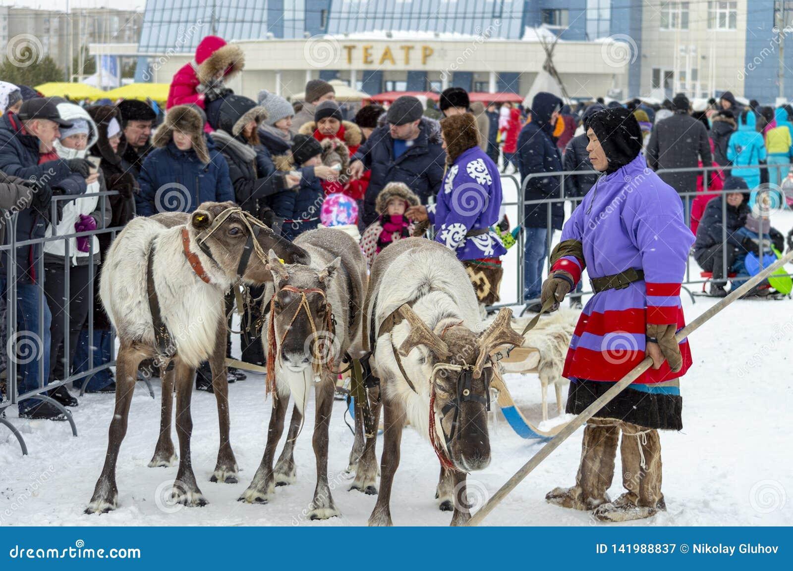 "Local aborigines - Khanty, ride children on a reindeer sleigh of three deer, sleigh, winter, ""Seeing off winter"" festival"