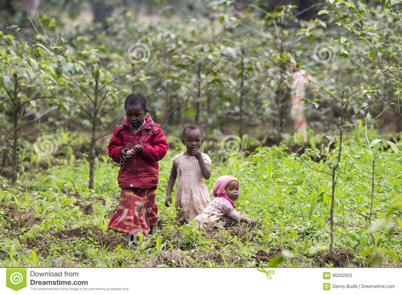 Local children working on the coffee- and banana- plantation fields.