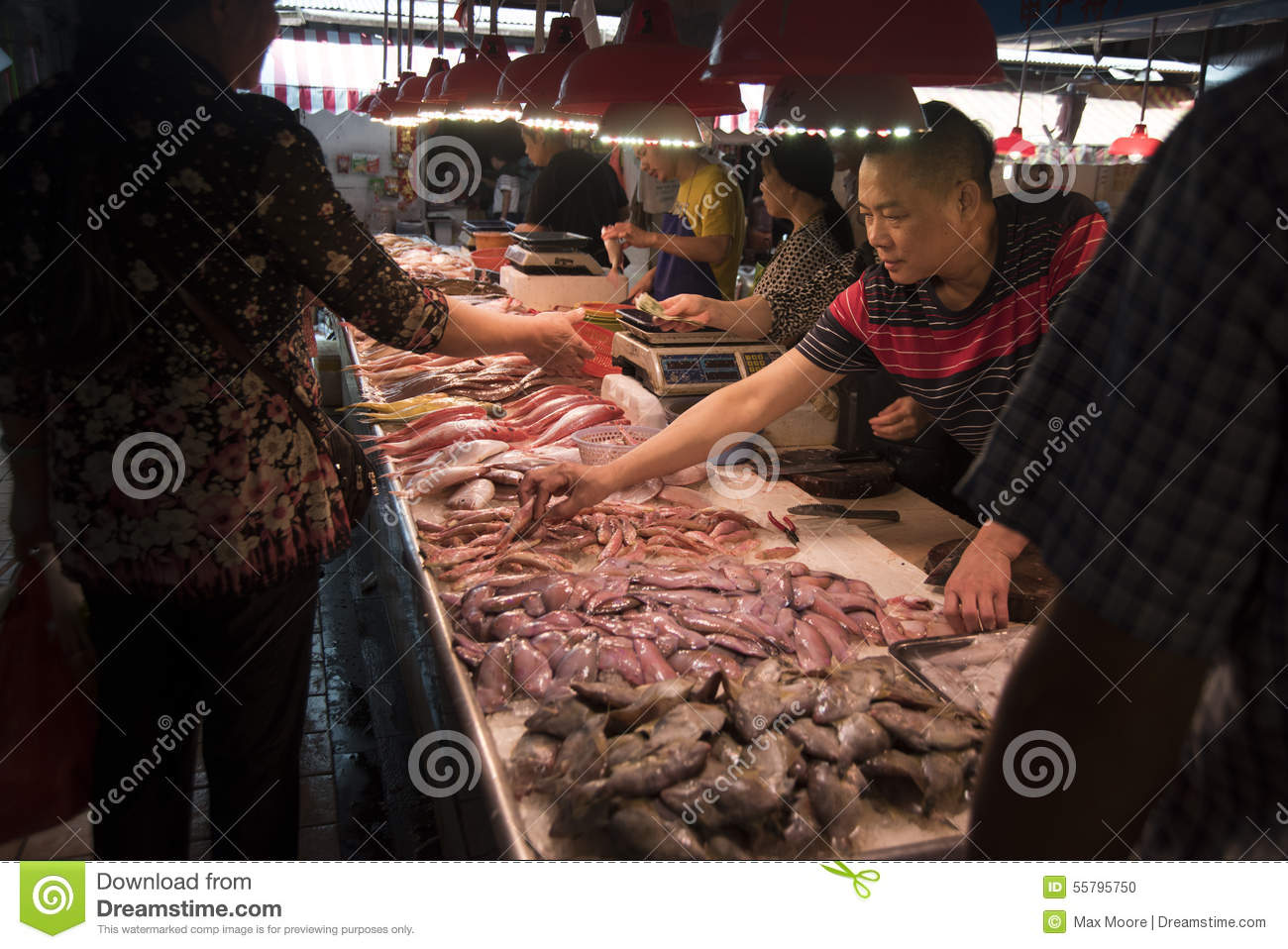 Local fish market shanghai editorial image image 55795750 for Fresh fish market near me