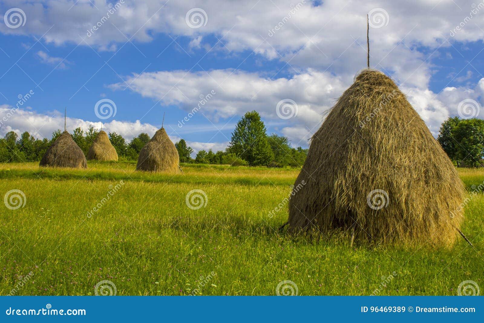 Locale Hay Bales in Breb rurale, Romania