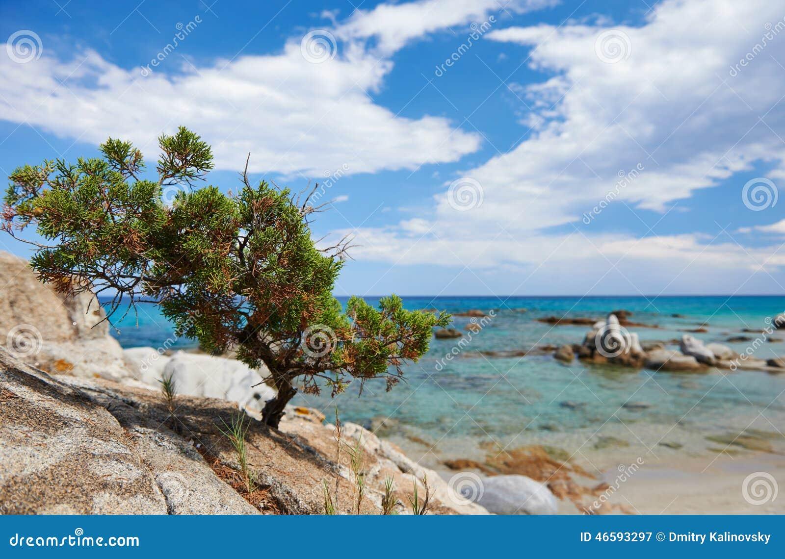 Offerte Pacchetto Nave Soggiorno Sardegna – Idea d\'immagine di ...