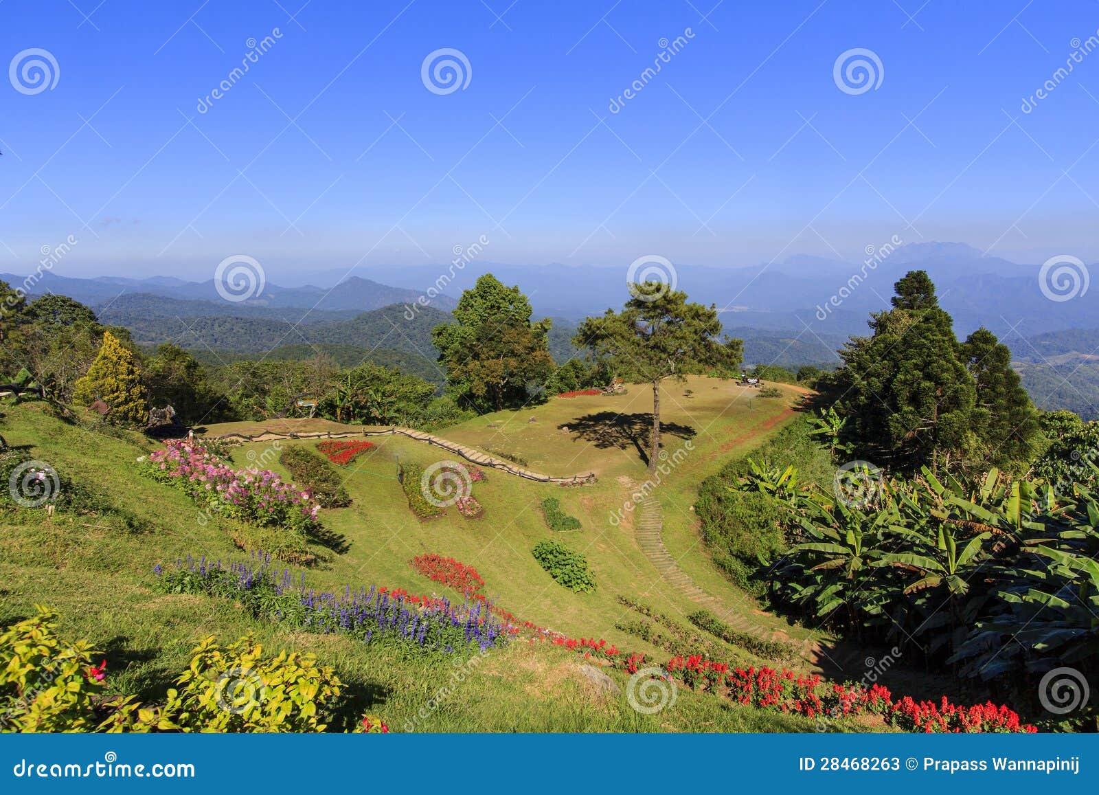 Localit di soggiorno di montagna con il giardino di fiore - Giardini di montagna foto ...