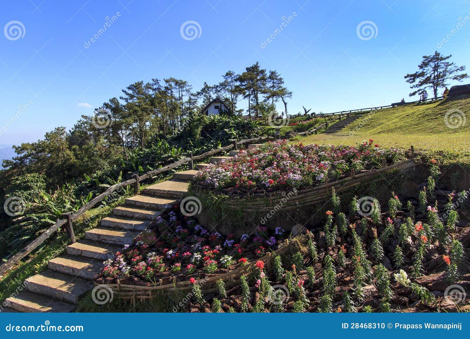 Localit di soggiorno di montagna con il giardino di fiore for Soggiorno montagna