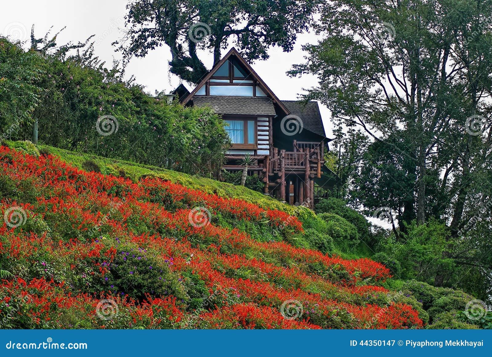 Località di soggiorno nella giungla