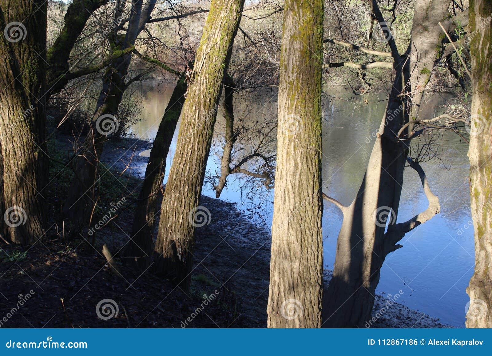 Localizado ao longo do rio do russo, o parque regional do beira-rio está apenas minutos de Windsor e de Healdsburg do centro