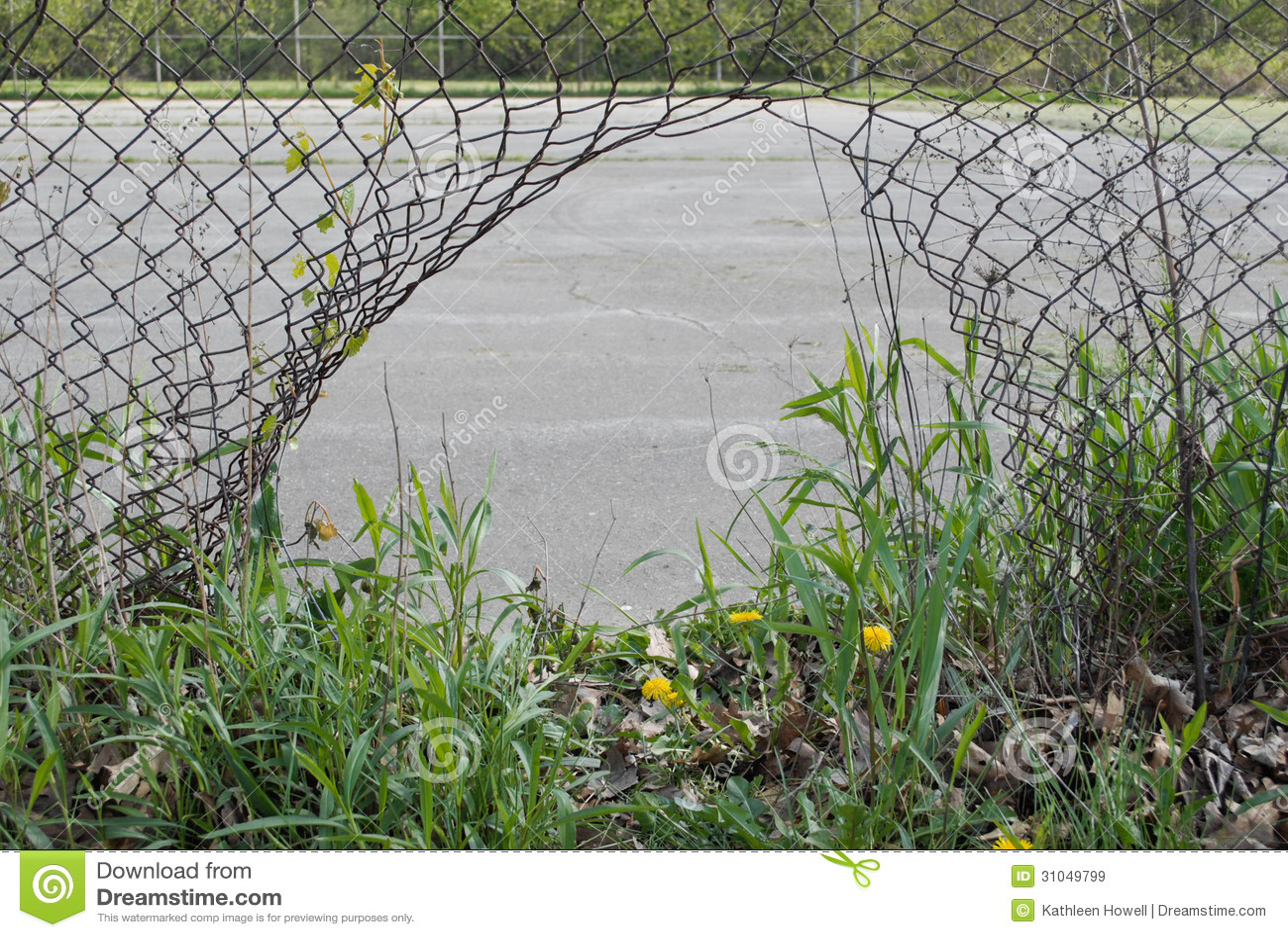 Loch im Zaun. stockbild. Bild von tennis, überwuchert - 31049799