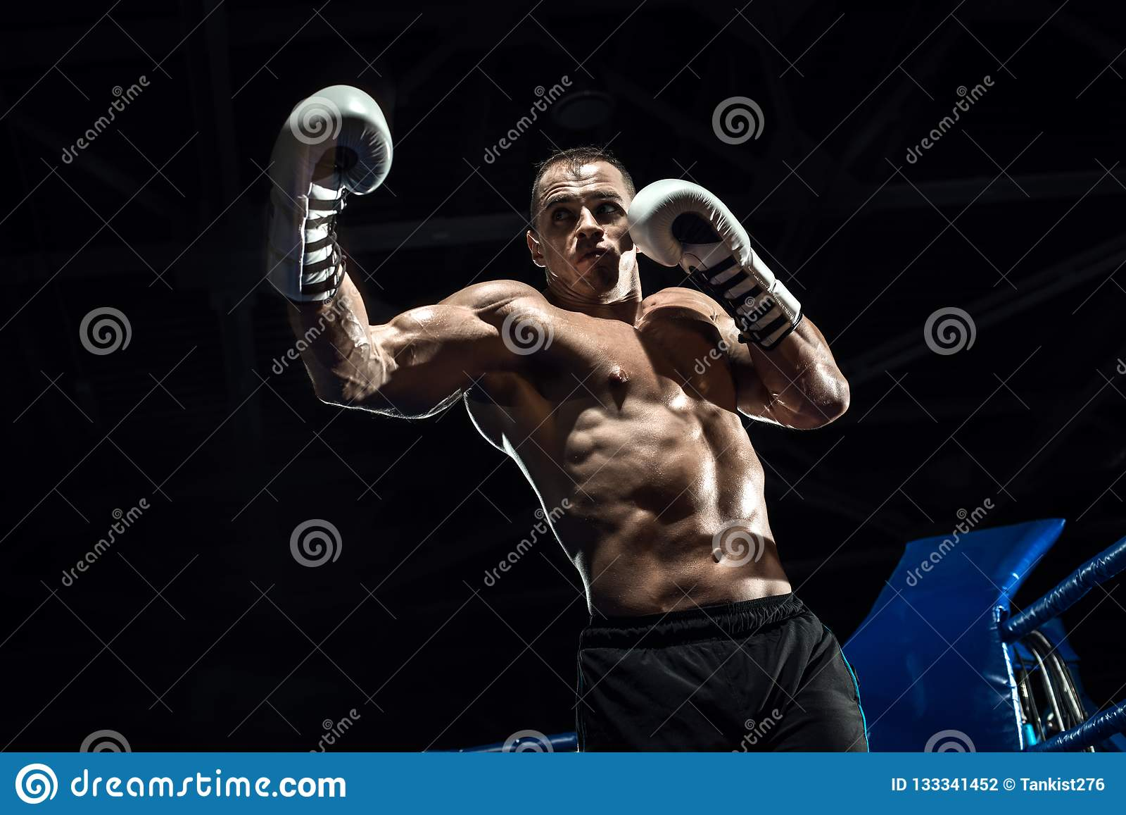 Lochender Boxer auf Boxring