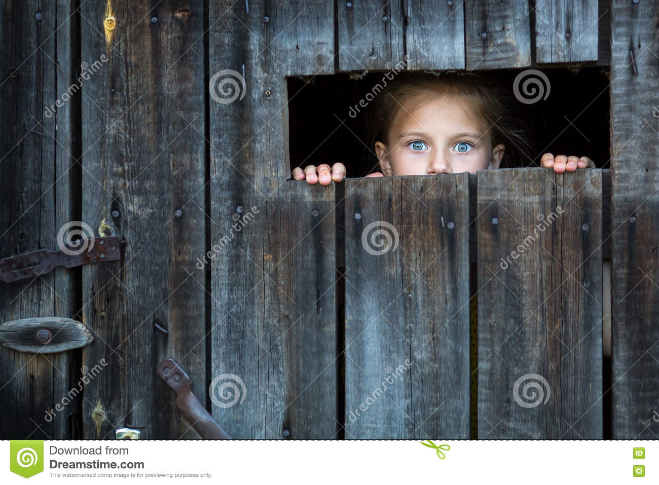 Locked the child anxiously looks through the crack in the barn door. Fright.