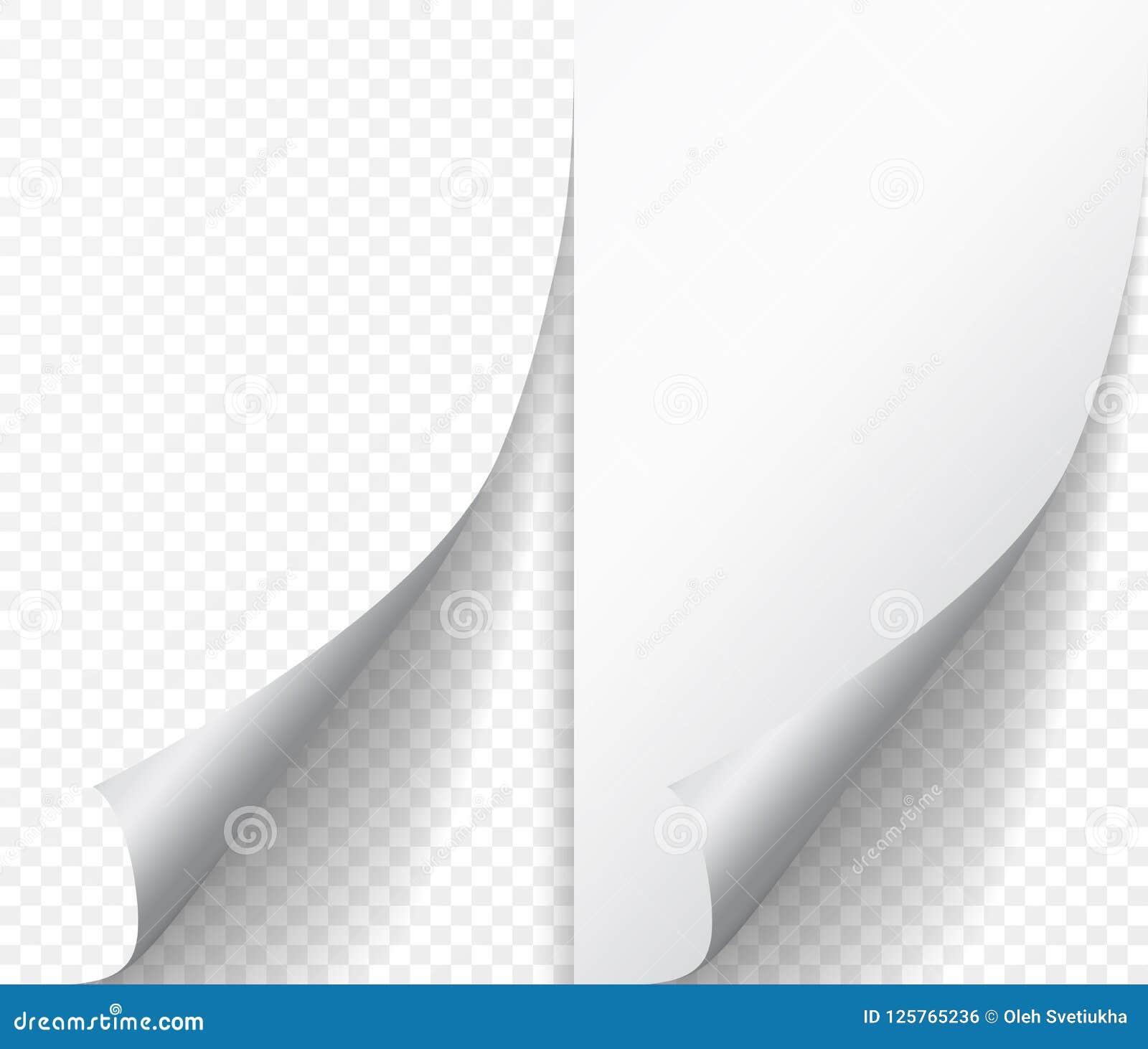 Lockenecke der weißen Seite auf leerem Blatt Papier Drehen Sie Papieraufkleber mit dem Rand des leichten Schlages, der auf transp