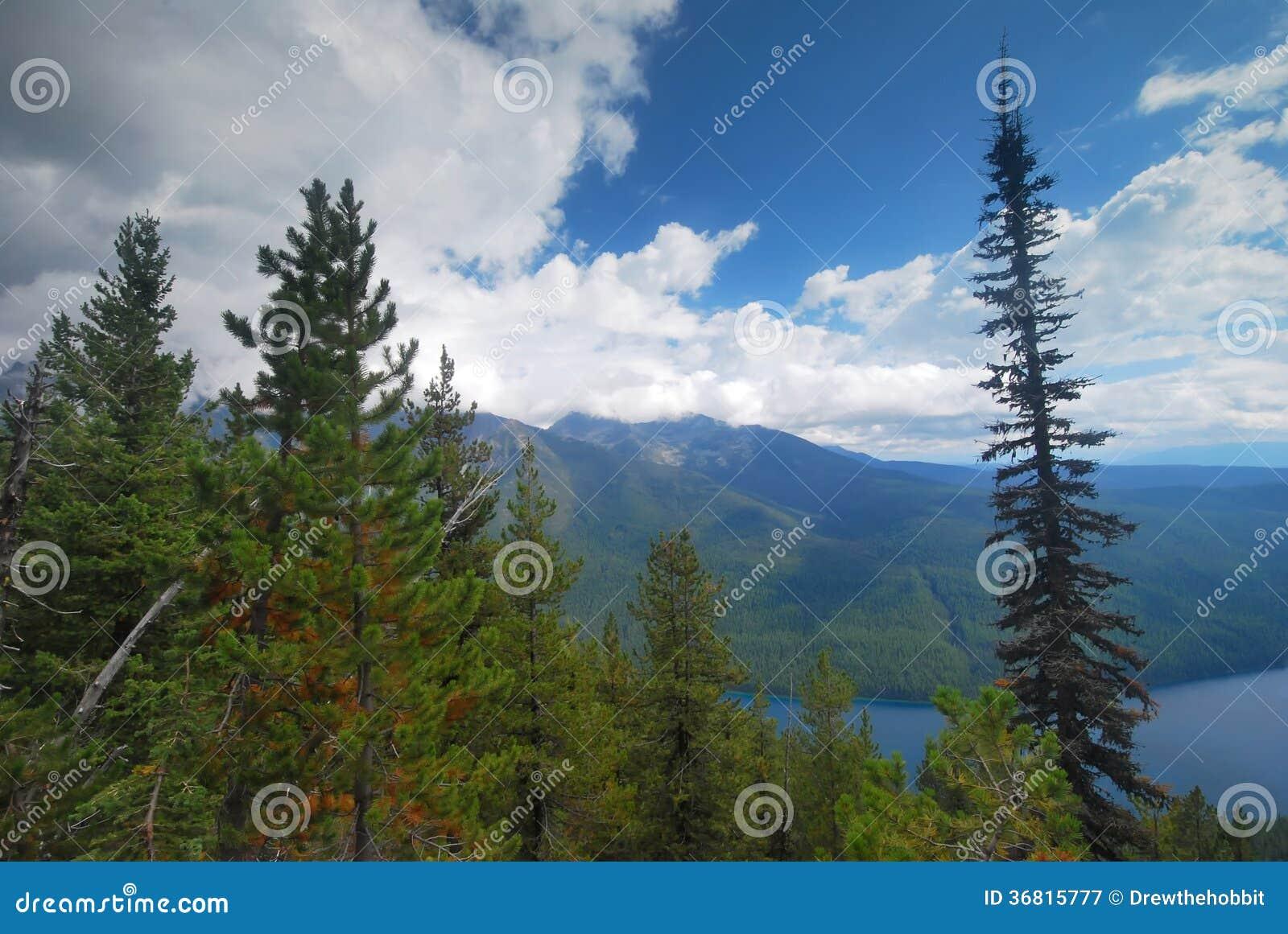 Lodowa park narodowy w Montana