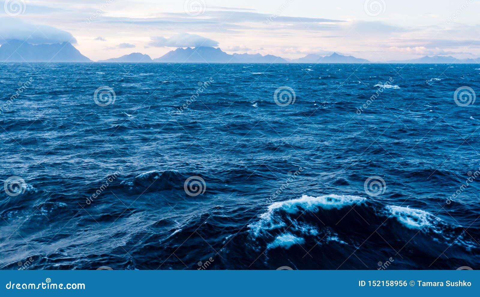 Lofoten, Norvegia Sea fotografia stock. Immagine di norway ...