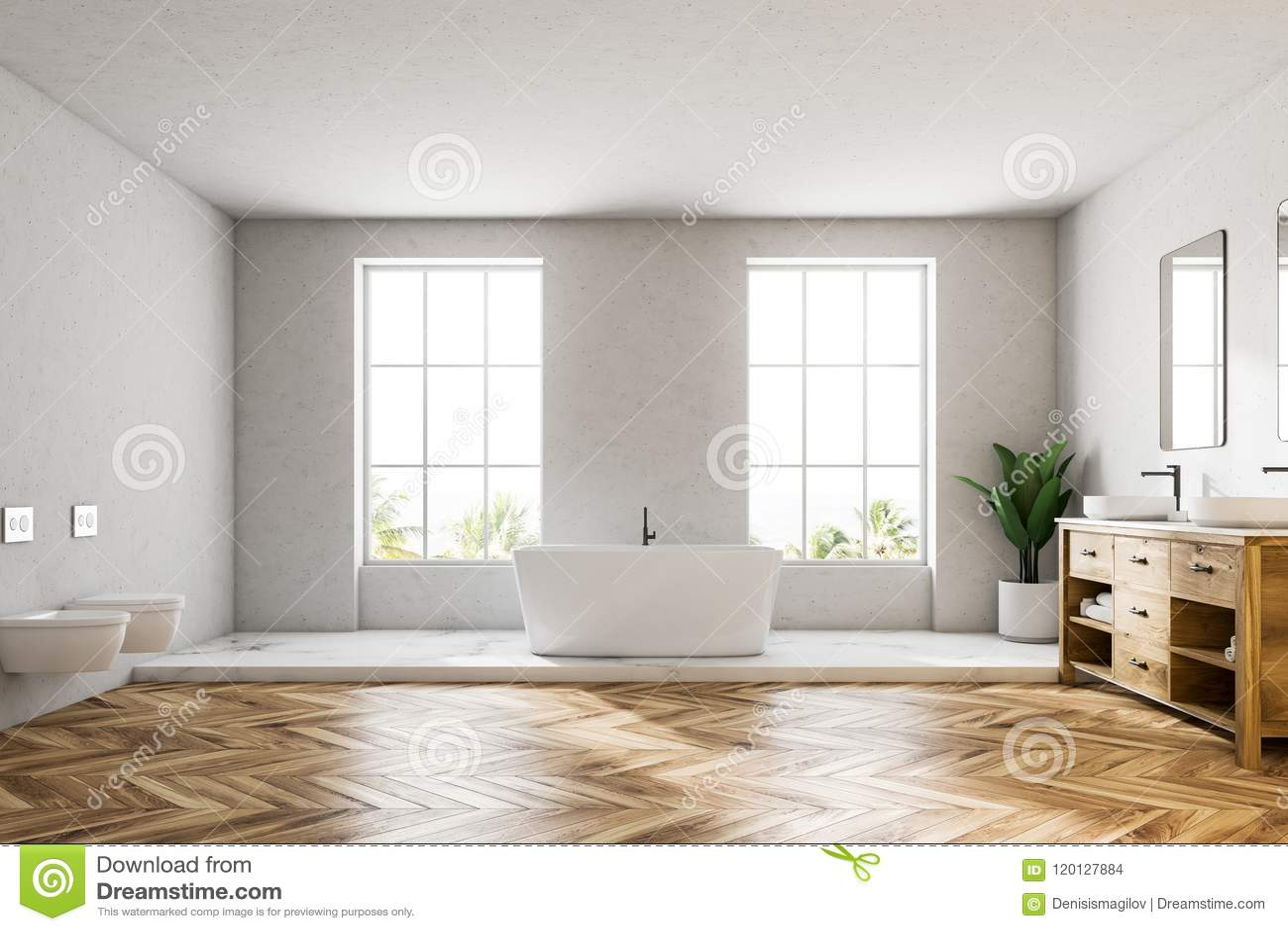 Loft El Cuarto De Baño De Lujo Blanco Interior, Tina Blanca Stock de ...