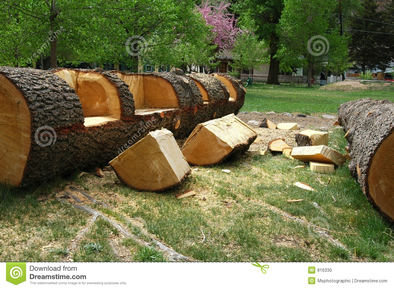 Log Bench Stock Photo Image Of Carved Wood Forest