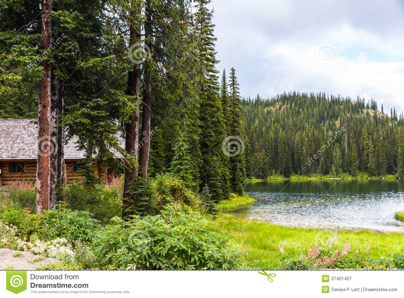 Log Cabin In Pine Forest By Lake Royalty Free Stock