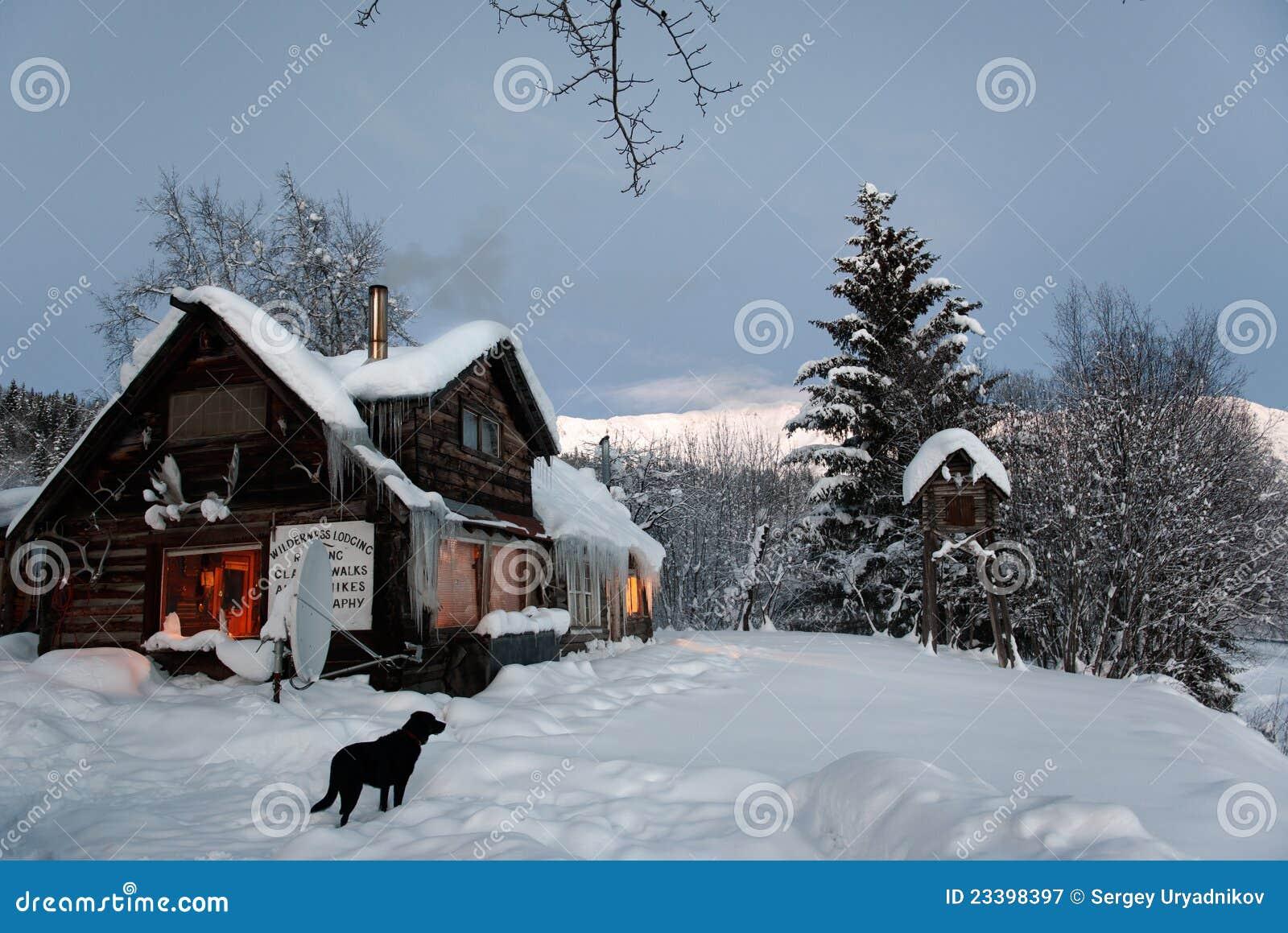 Black Dog Real Estate