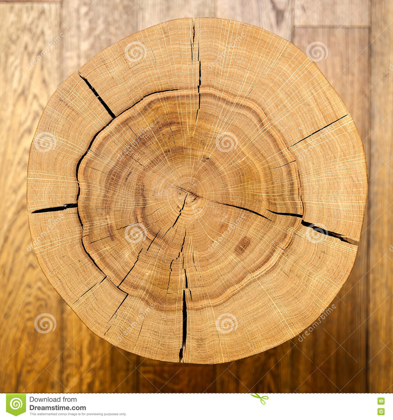 log core against a wooden floor top view background texture