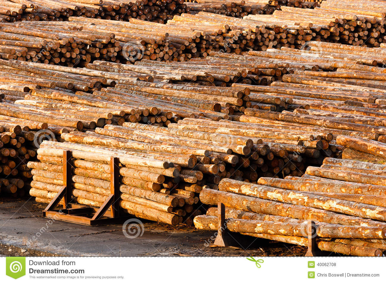 Wood wooden boards planks lumber natural forest trees for Mill log