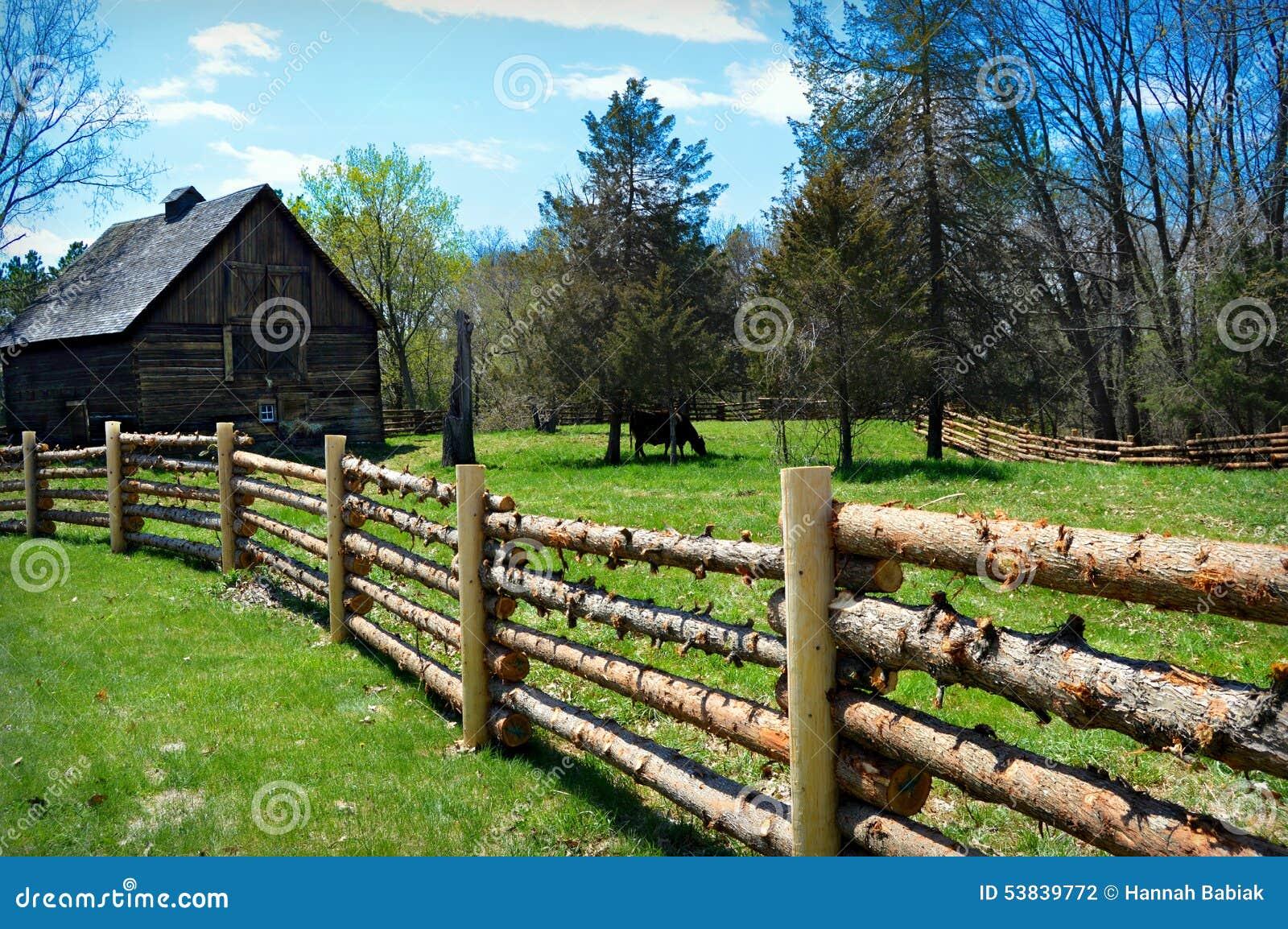 Log Fence Barn Cow Stock Photo - Image: 53839772