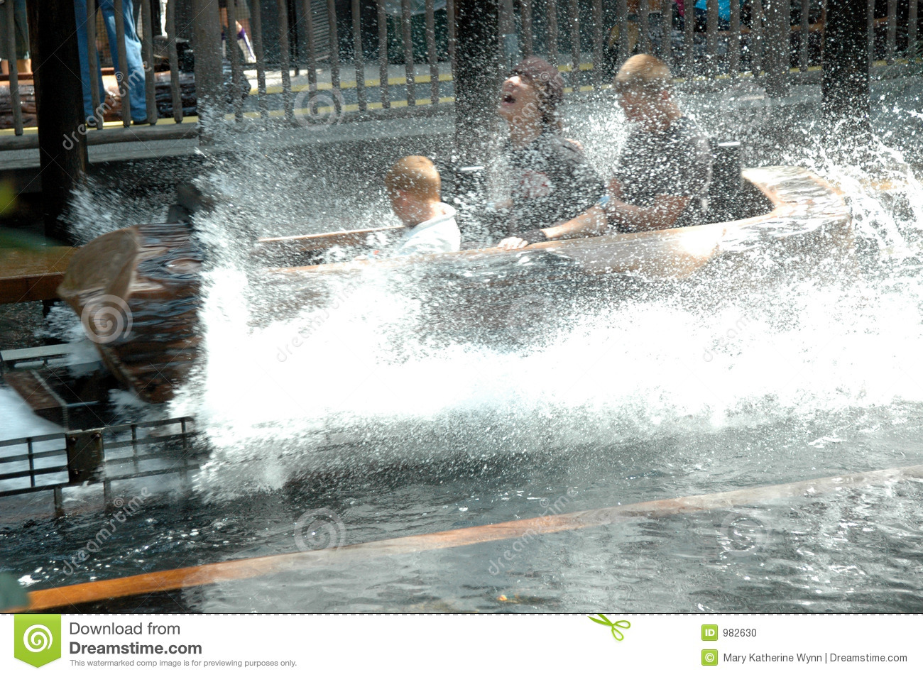 Log Flume ride