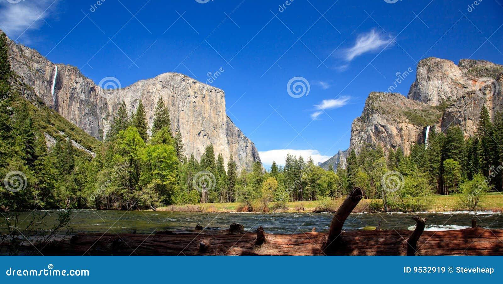 Log framing Yosemite Valley